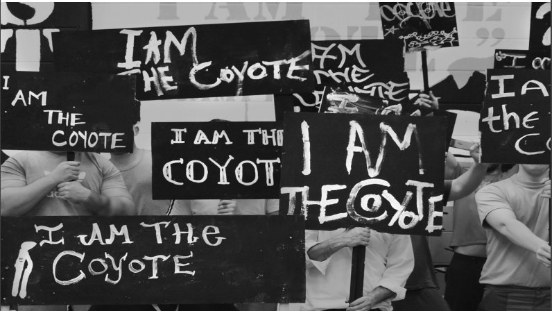 I am the Coyote